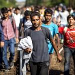 migrants-stuck-at-bicske-station