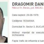 dragomir-6